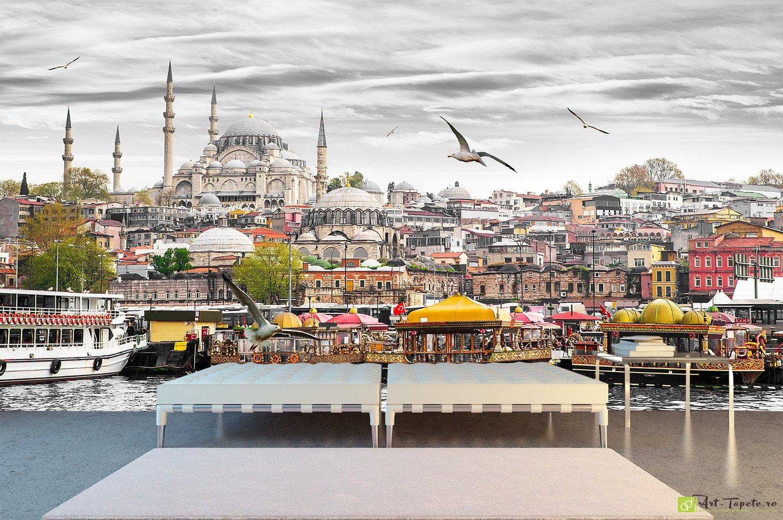 Murals XXL images Istanbul Turkey SHEET CANVAS ART PRINT 602012P